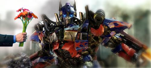 My Apologies To Optimus Prime